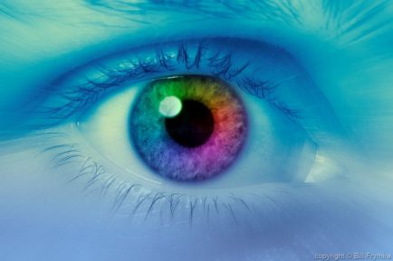 close-up-colorful-iris