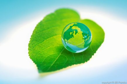 marble globe on green leaf Nature world ecosystem regeneration growth new