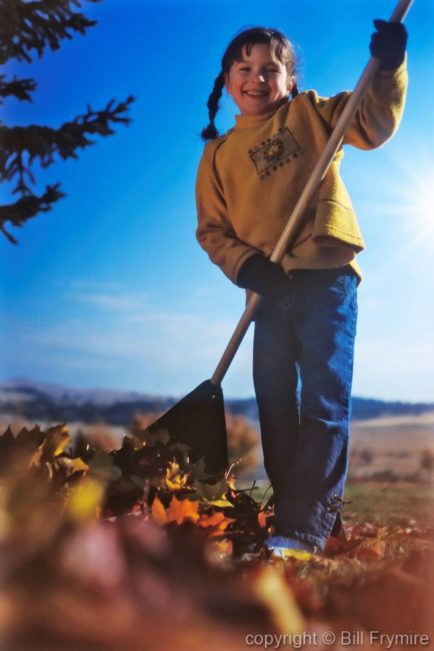 vertical of young girl raking leaves in autumn